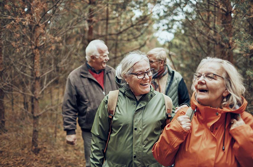 4 healthy seniors hiking in the forest