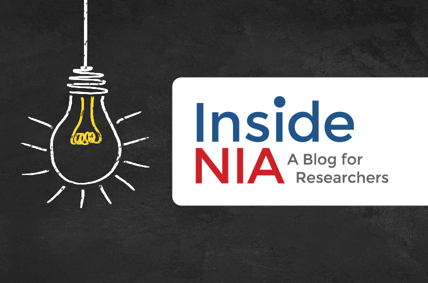 Illustration of lightbulb with Inside NIA: A Blog for Researchers