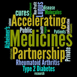 The Accelerating Medicines Partnership (A M P)