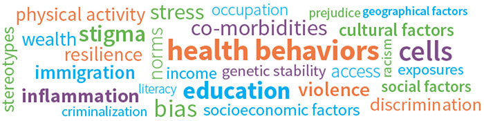 Word cloud with terms like: health behaviors; education; inflammation; co-morbidities; cells; physical activity; stigma; immigration; bias; violence; and others.