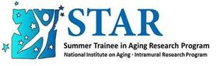 Summer Training in Aging Research logo
