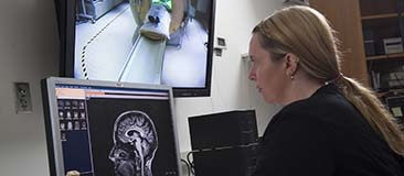 Researcher reviewing brain scan