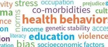 Word cloud with health disparities terms