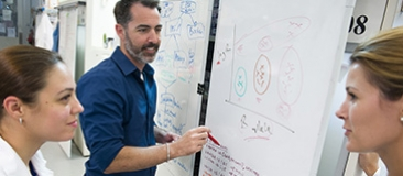 Researchers with whiteboard