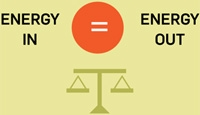 Energy in is equal to energy out