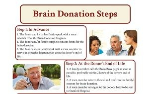 "Brain donation steps for ""in advance"" and ""at the donor's end of life"""
