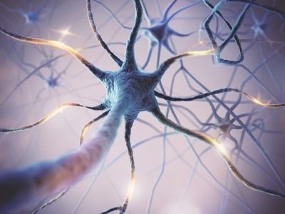 graphic representation of a neuron