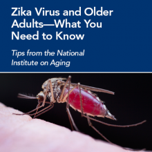 Zike virus and older adults - what you need to know. Mosquito.