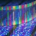 DNA test Sanger sequencing