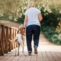 Woman walking with a dog down a bricked paved walkway through the woods.