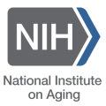 National Institute on Aging at NIH logo