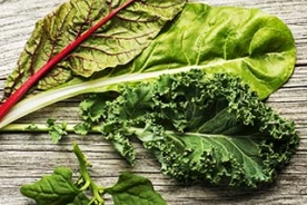 Selection of leafy green vegetables