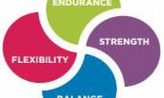 4 types of exercise: Endurance, strength, balance, flexibility