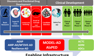 NIH supports infrastructure and initiatives, including ADSP, AMP-AD, M2OVE-AD, Resilience-AD, MODEL-AD, AlzPED, ACTC, ADNI, and ADCs,  to enable Alzheimer's and related dementias research from discovery (basic research and target ID early validation) and preclinical development (compounds screening, proof of concept and lead optimization, candidate selection, and safety/tox IND) through clinical trials (phase 1, 2, and 3).