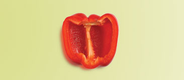Half of a large (3 x 4-inch) red pepper